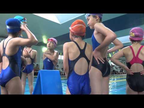 【JS競泳水着盗撮動画】水泳教室でプールを泳ぐ女の子たち…発育が始まったぷりんぷりん尻を隠し撮りww |
