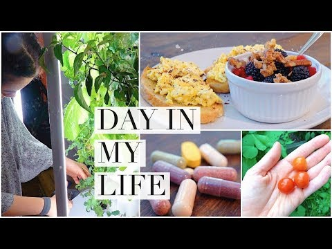 DIML: Cooking, BUMPDATE, gardening & working out!