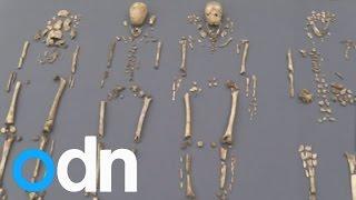 العثور على 4 هياكل عظمية لمعمري أمريكا الانجليزية عمرها 400 عام