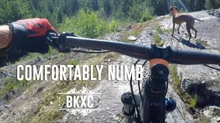 Taking you through the IMBA epic Comfortably Numb, the ride I came to Whistler for.