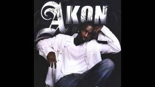 Akon (ft. David Guetta) - Nosy Neighbor [HQ]