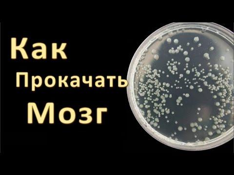 Купить колме в аптеке украины