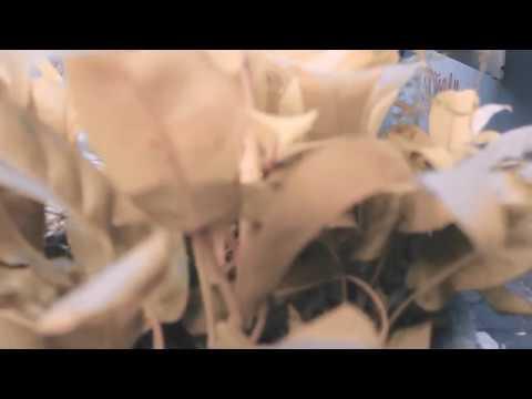 WEIRD GENIUS - LUNATIC (ft.Letty) (Cover Lyrics Video)