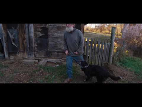Peter and the Farm clip - Dog
