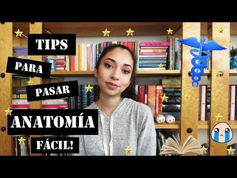 LOS MEJORES TIPS PARA APROBAR ANATOMIA ❤ | Mariana Gómez