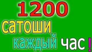 САТОШИ КАЖДЫЙ ЧАС В СРЕДНИМ 1200- 1500