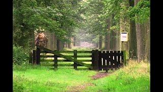Kijk, dit is Oisterwijk (Jaargang 2005) – De Heide (1)