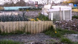 preview picture of video 'A day at the allotment'