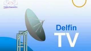 DELFIN TV