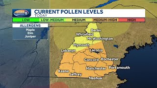 Are you an allergy sufferer? Pollen count high across much of NH