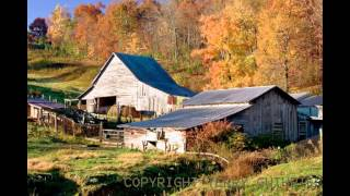 Down on the Farm-Joe Walsh