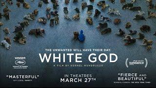 White God  Official Trailer