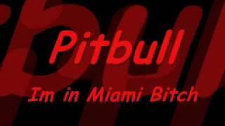 Pitbull - Im in Miami Bitch (Dj Thomas Sena)