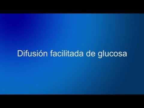 La patogénesis de la diabetes tipo 1 ensayo