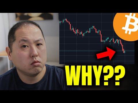 Ruud feltkamp bitcoin trader