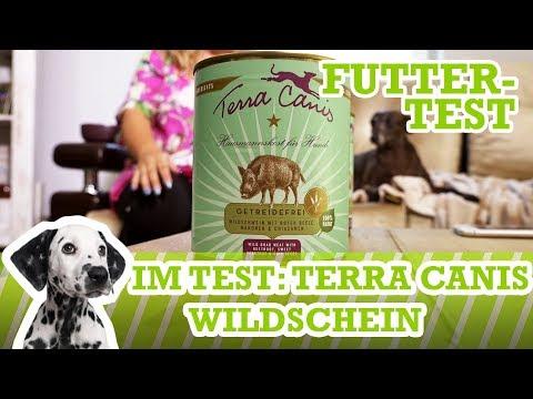 Futtertest Terra Canis Wildschwein, Rote Beete, Maronen & Chiasamen (Nassfutter)