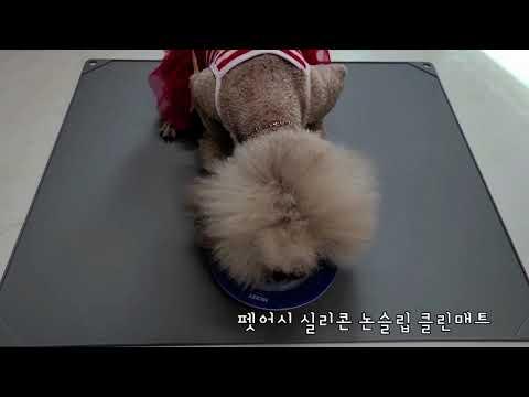 강아지 논슬립 클린매트