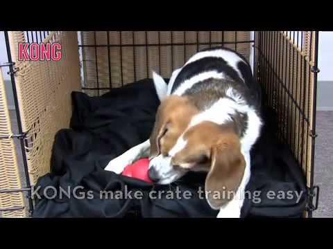 Juguete para perro Kong (original)