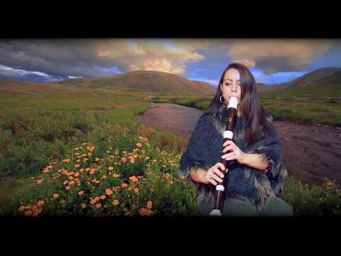 Hallelujah - Tenorblockflöte Cover