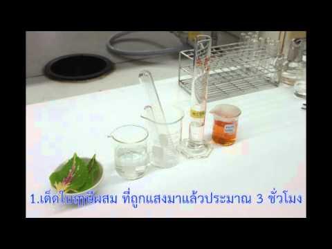 Giardia และ ciliates sporozoans