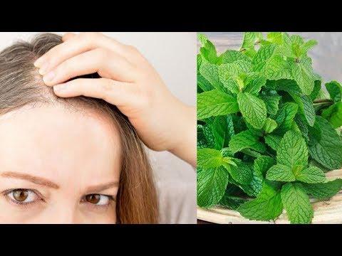 Die Vitamine für den Haarwuchs bei den Männern