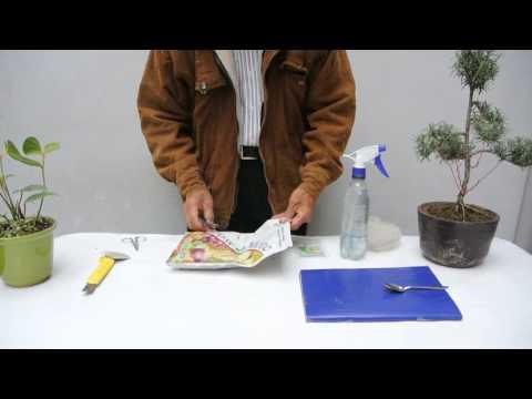 Que es y como usar el abono foliar