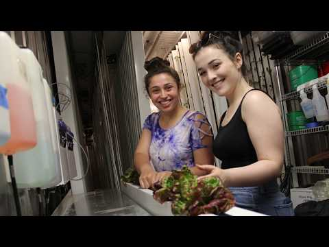 Freight Farm, Stony Brook University's Leafy Green Machine