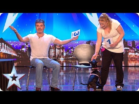 Meet Tilly: The world's most intelligent dog!   Auditions Week 1   Britain's Got More Talent 2018
