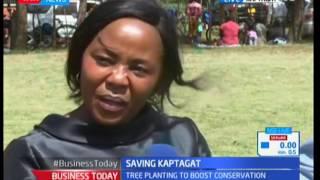 Saving Kaptagat : Alteast 7,000 seedlings to be planted