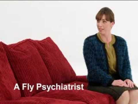 Fly Psychiatrist