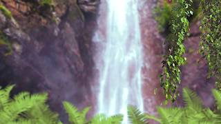 Waterfall HD Stock footage | Free Download no Copyrights