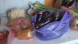 Заморозка на зиму - баклажаны, кабачки, болгарский перец, помидоры, зелень.