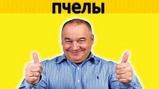 Игорь Маменко - пчелы