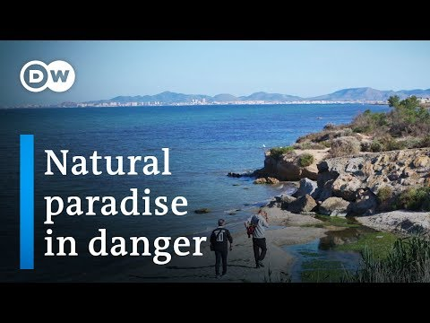 Saving Spain's largest saltwater lagoon | DW Documentary (Environment documentary)