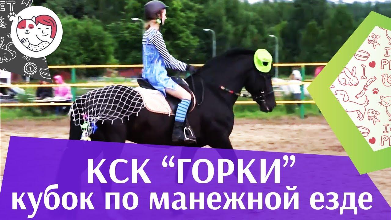 Летний кубок КСК Горки по манежной езде КЮР часть 28 на ilikepet