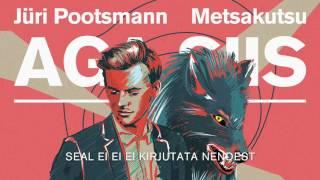 Jüri Pootsmann feat.Metsakutsu - Aga Siis (Remix)