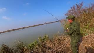 Рыбалка темрюкский район запрет на рыбалку