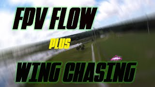 FPV PARK FLOW, Plus wing chasing! #fpv #fpvwing #freestyle