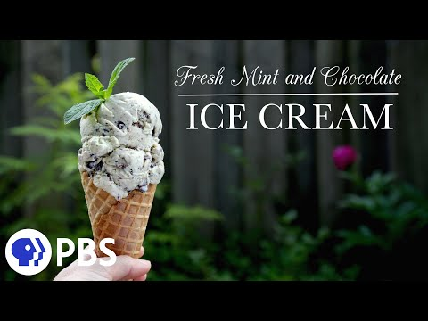 Video Fresh Mint and Chocolate Ice Cream | Kitchen Vignettes | PBS Food