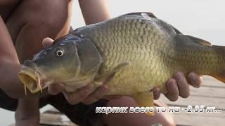 Криуша рыбалка арзамасский район