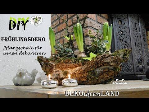 DIY Frühlingsdeko Pflanzschale für innen I voorjaarsbloemstuk I Spring Centerpiece I DekoideenLand