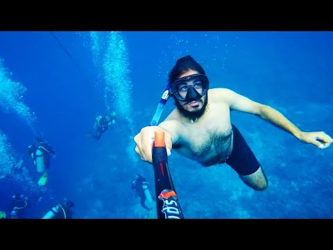 POWERFUL! DIVING IN THE 2nd BIGGEST REEF IN THE WORLD - Apo Reef The Philippines