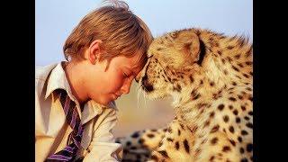 【说书女孩】男孩捡到一只小豹崽,养大后比猫还温顺!《杜玛》