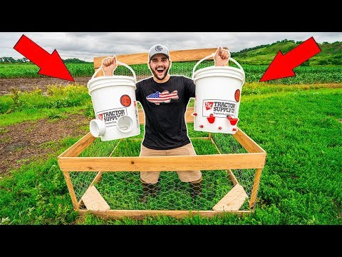 , title : '$5 HOMEMADE Automatic CHICKEN FEEDER and WATERER!!!  (DIY)