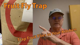 A Fruit Fly Trap DIY, How to get rid of Fruit Flies in Your Kitchen.