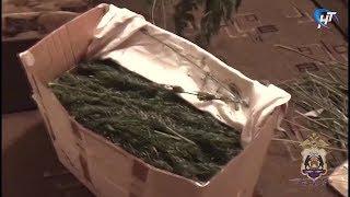 Полиция конфисковала 22 кг наркотиков у жителя Батецкого района