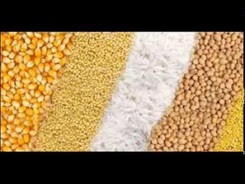 Wanda aur Food Grains by Dr Ashraf Sahibzada - Free video