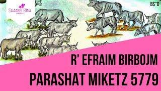 Parashat Mikets