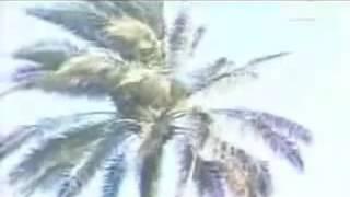 سعدي توفيق البغدادي أبوذية حبيبي الغالي عاد لنا وفى النا و اغنية لو حبي لو ما اريد تحميل MP3