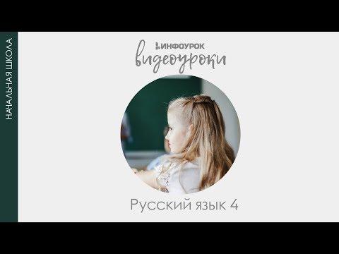 Астрология и нумерология книга